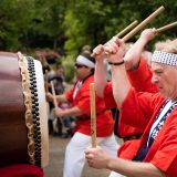 The Fort Worth Japanese Society Taiko Drum club, perform during the Japanese Spring Festival at the Fort Worth Botanical Gardens, April 10, 2016, in Fort Worth, Texas.  Credit: Jeff Woo