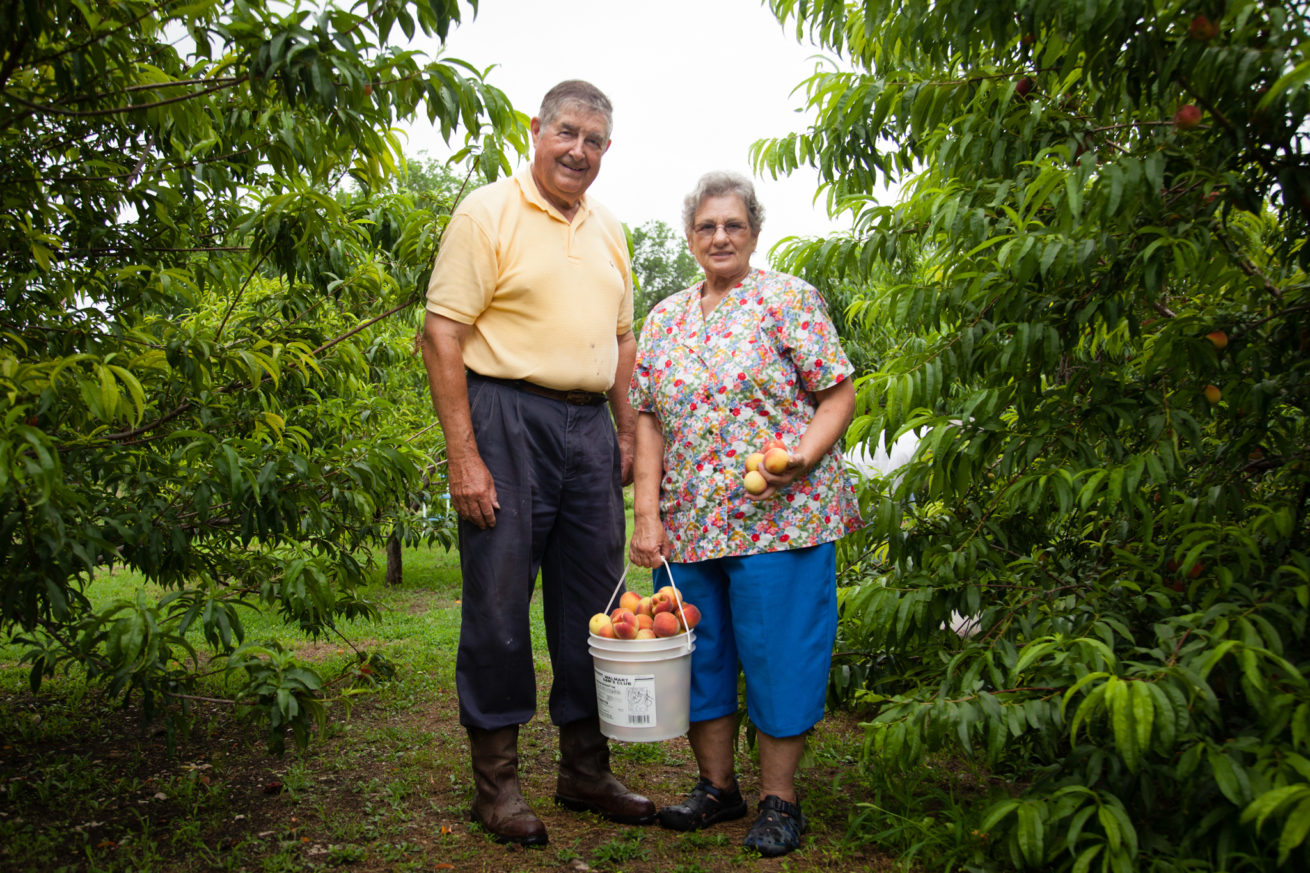 Jim and Janet Herbison, pose in their peach orchard.